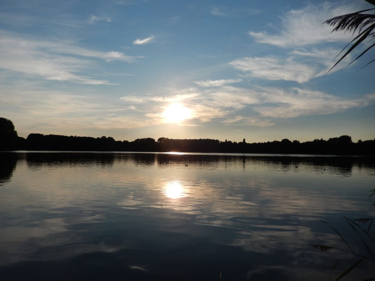 Sunset_collection Delftse Hout Nature_collection Water_collection