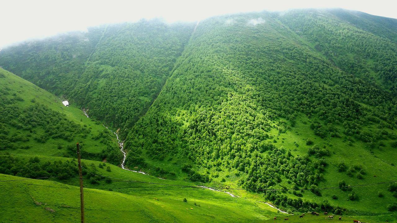 Trabzon Uzungol Turkey Haldizen Trabzon Yayla