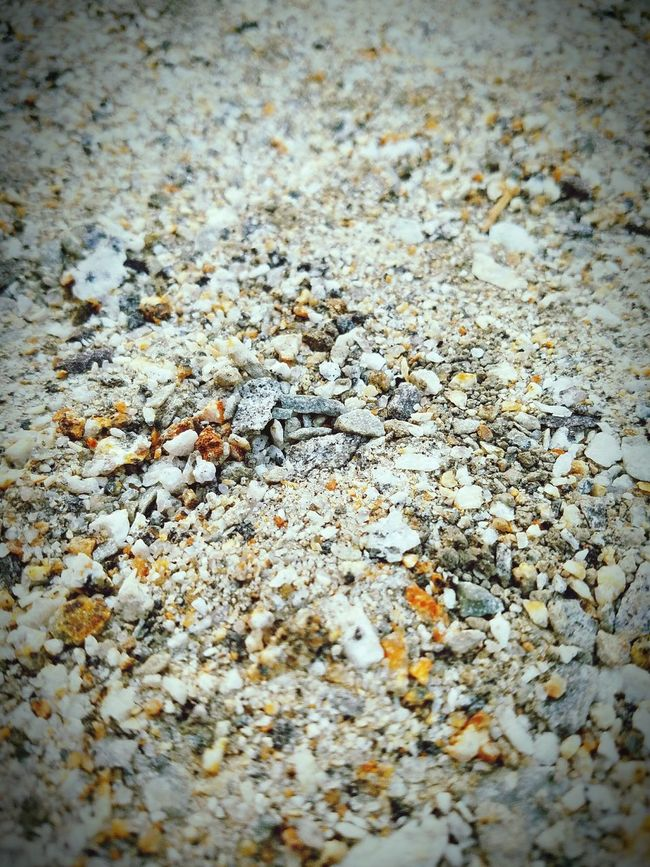 Just a photo of some dirt. Taking Photos Just Dirt California Grey Rocks Little Sand Grainy Grains Of Sand