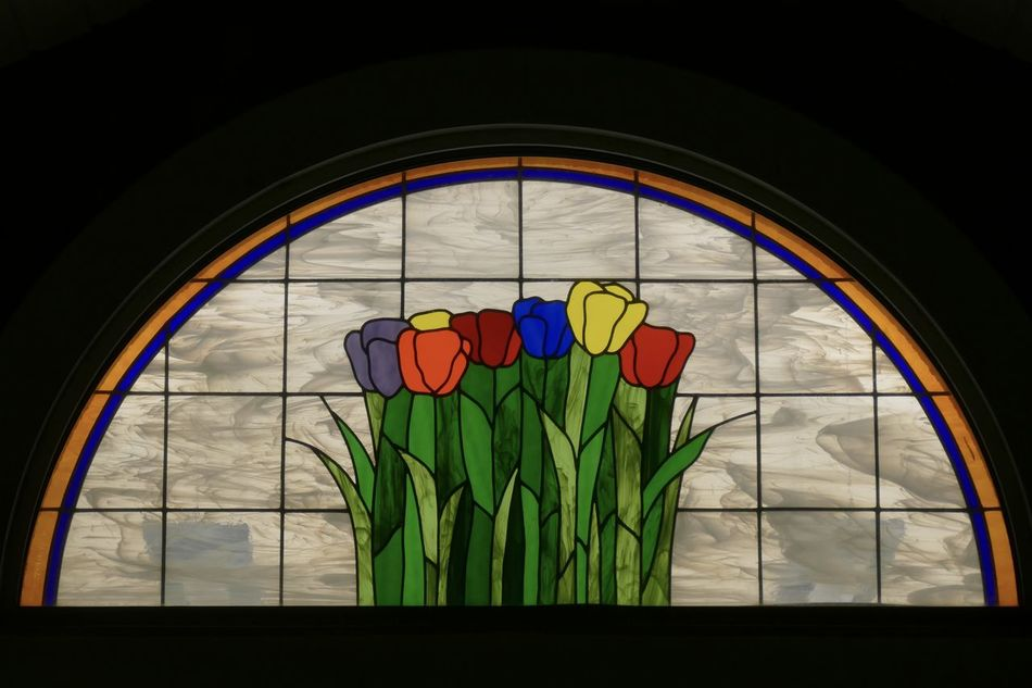 Tulip glass. Black Border Close-up Flowers Glass - Material Multi Colored No People Stained Glass Stained Glass Window Tulips Window