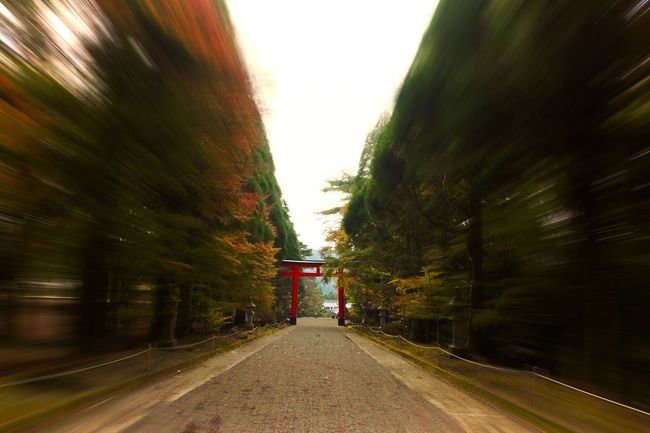 日本の風景 Japan 鹿児島 霧島神宮
