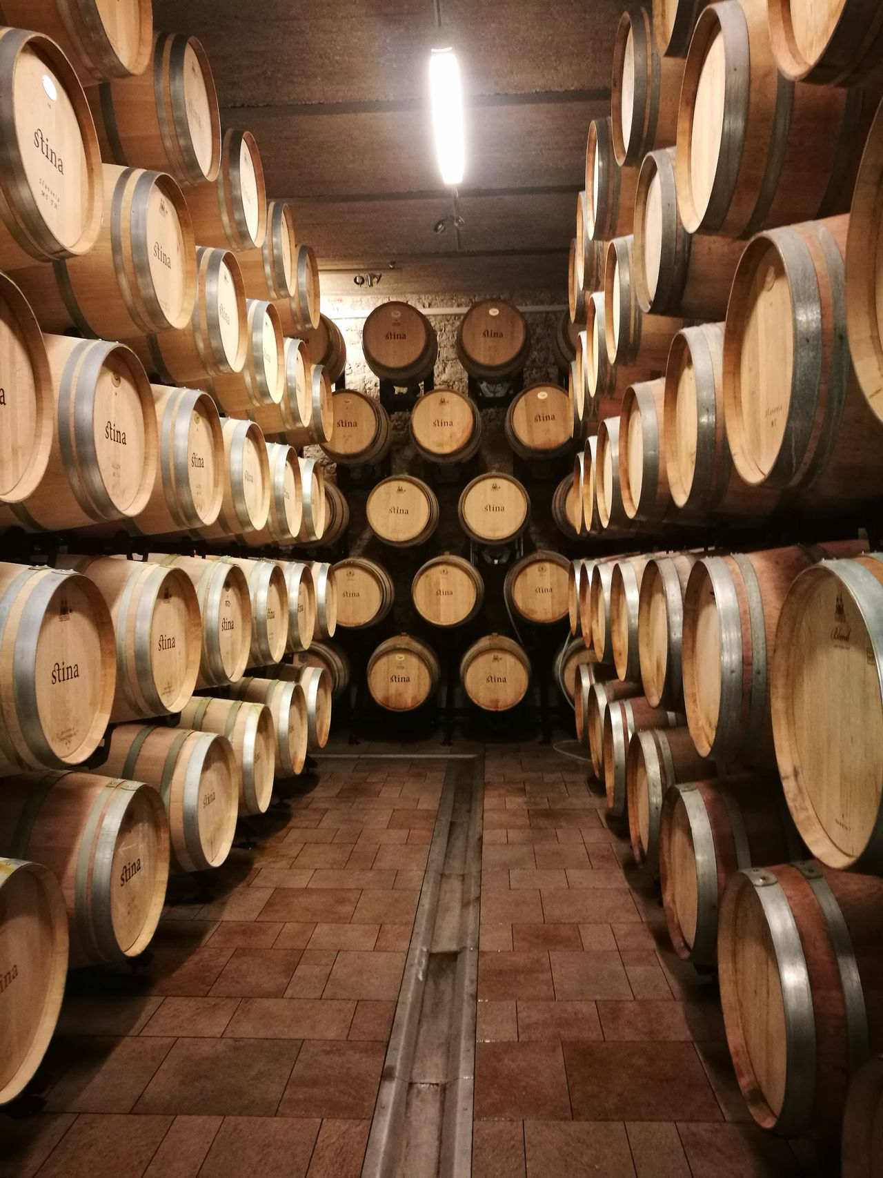 Wine Wine Cellar Cellar Winemaking Wine Cask Winery Indoors  In A Row Barrel Shelf Wood - Material Food And Drink Warehouse Alcohol Stack Industry Business Finance And Industry No People Keg Arrangement