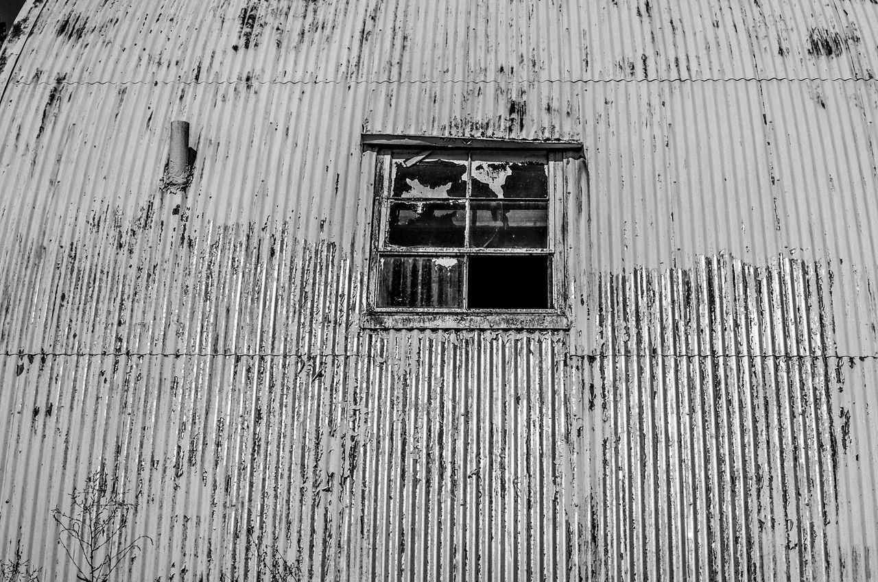 Animal Themes Architecture Building Exterior Built Structure Corrugated Iron Day Low Angle View Nature No People Outdoors Window Wood - Material