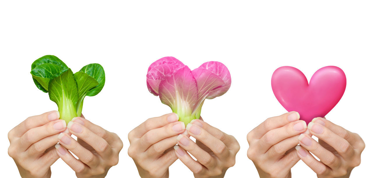 Deliver good health for the people you love. Vegetables are good for your heart. Images isolated on white background with clipping path. Beauty In Nature Clipping Path Communicate Conceptual Photography  Finger Give Green Color Green Color Happiness Healthy Eating Heart Shape Human Body Part Human Hand Isolated White Background Love Pink Color Red Color Studio Shot Transfer Useful Valentine Day Gift :) Woman's Hand