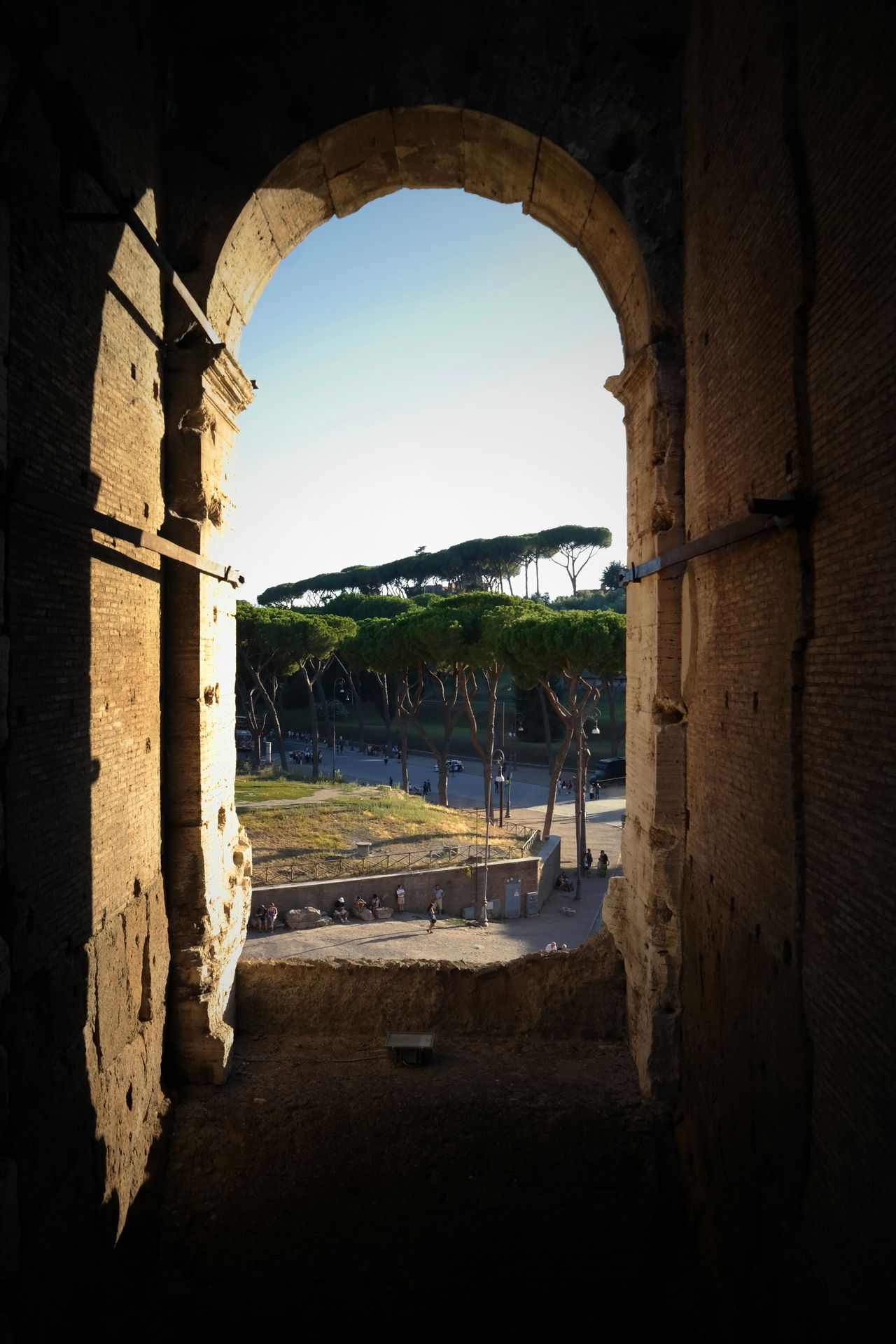 Coliseo Rome Italy Alive Trees Beautiful Nature Old Window