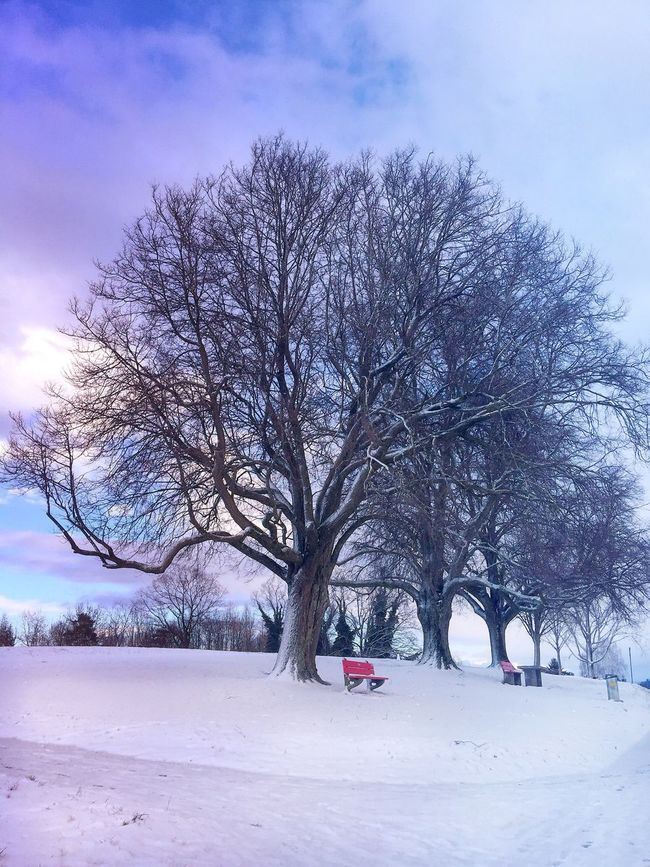 Snow Winter Switzerland Landscapes Amazing IPhoneography Landscape_Collection Photooftheday