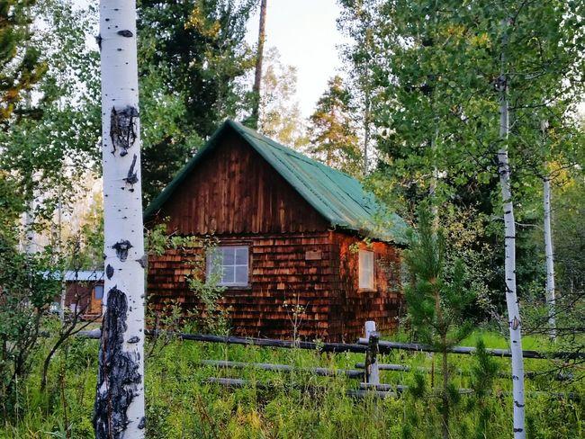 Tetons Wyoming Ranch Life Cabin In The Woods Rustic Woods Aspen Trees Shingles Buckrail Fence Sunrise Morning Light