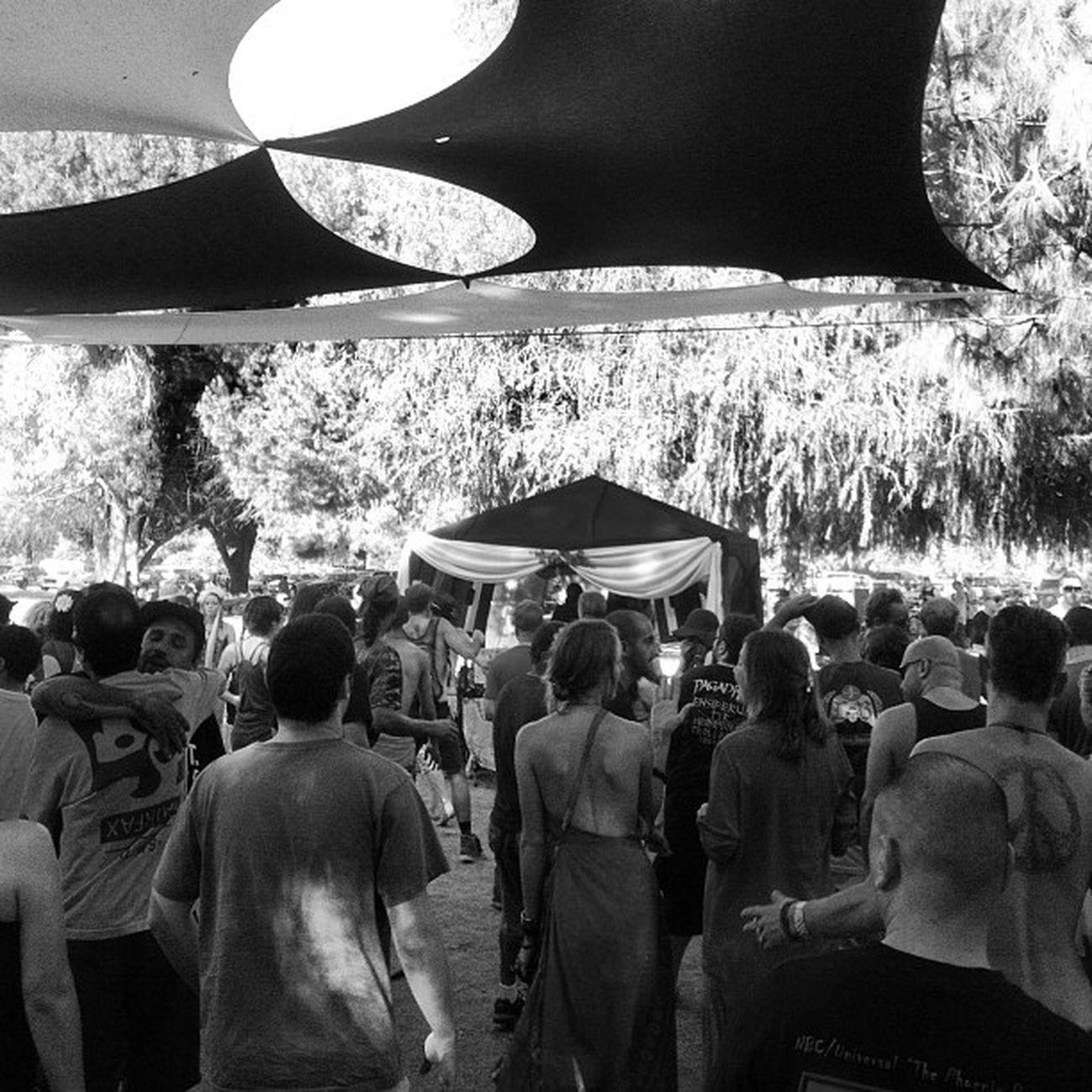 Woodleypark Sundaize Sunday Parkparty funky music party fuckyea dance
