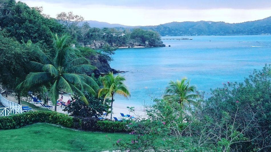 view from the balcony. Jamaica Carribean PalladiumHotel Vacation Beach Green