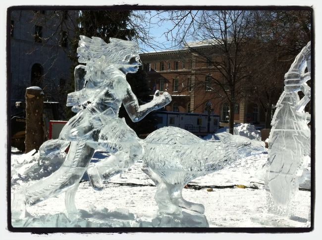 Running with Ice Wolves❄⛄? Art Ice Freezing Cold