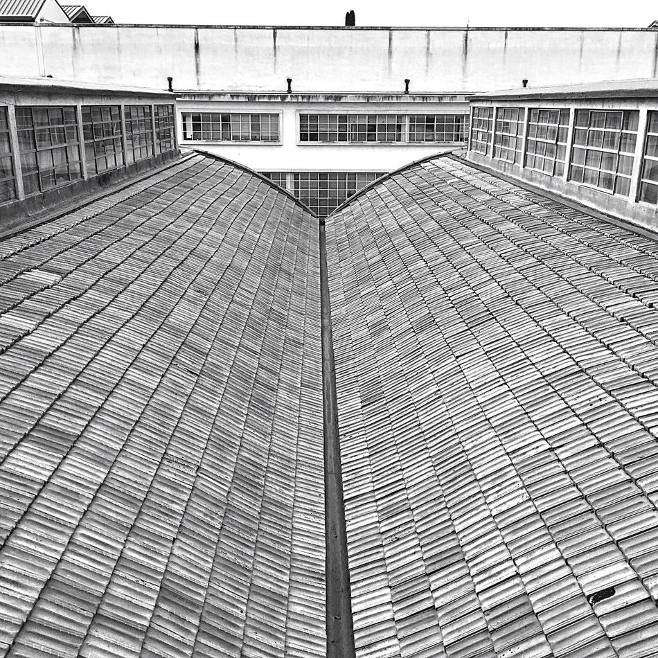 "View from the medieval walls of Pisa on ""modern"" roofs of Information technology institute. Built Structure Outdoors Architecture Pisa No People Bw"