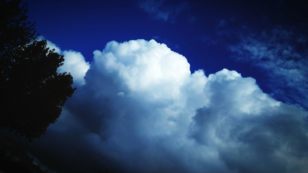 Clouds today...💕 Cloud - Sky Blue Sky Nature Tree Outdoors No People Beauty In Nature Day Sillouette Beautiful Clouds & Sky <3 Beauty In Nature Nature Tree Relaxation Tree Branches Trees