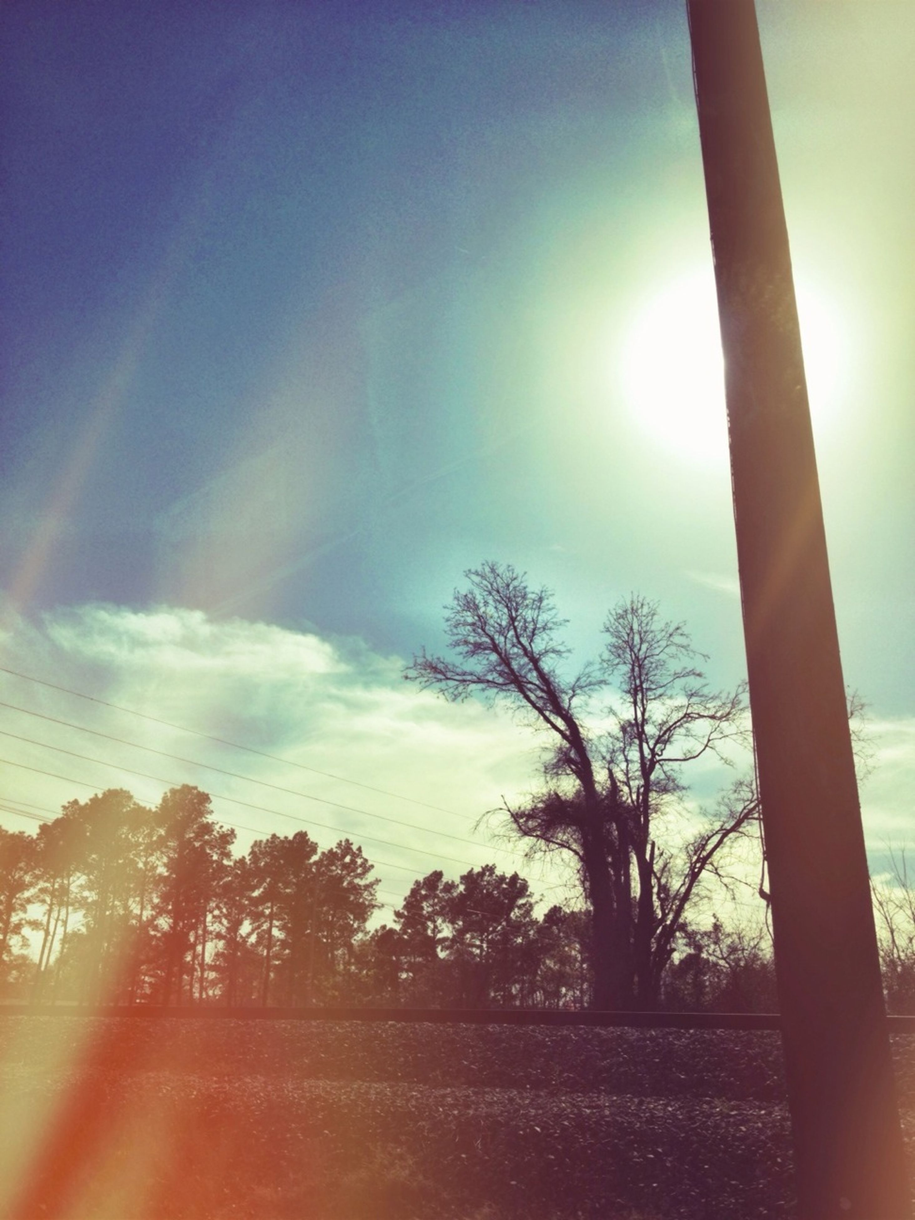 sun, tree, sunbeam, sunlight, lens flare, tranquility, sky, sunset, tranquil scene, bare tree, nature, scenics, beauty in nature, tree trunk, silhouette, branch, landscape, bright, growth, field
