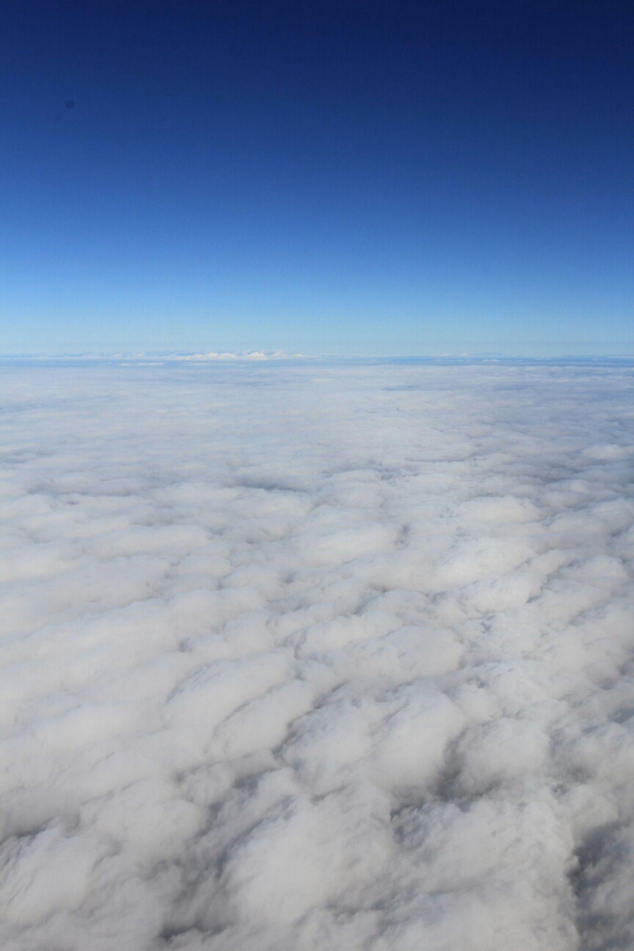 天空(〃⌒ー⌒〃)ゞ