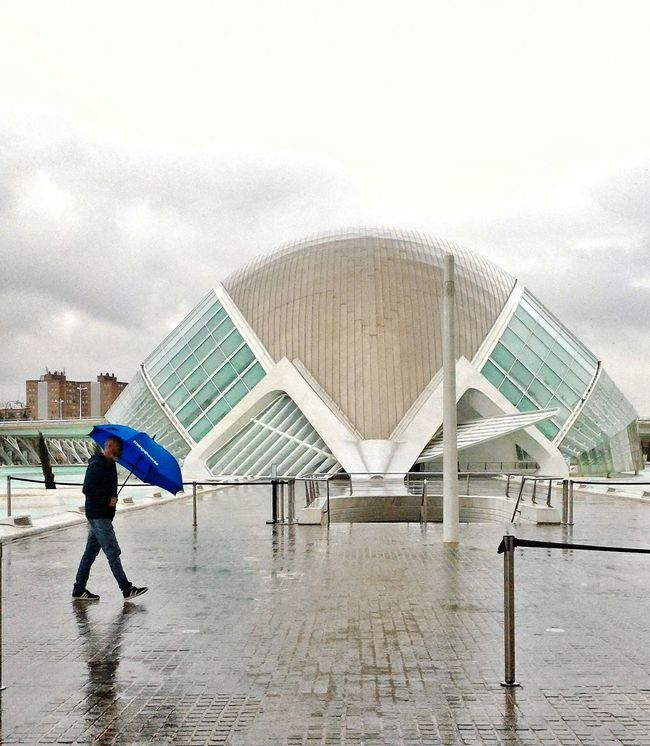 Valencia.Città delle arti e delle scienze. One Person Full Length Water People Architecture One Man Only Building Exterior EyeEmBestPics Valencia, Spain València Cittadelleartiedellescienze SPAIN EyeEm Selects EyeEmNewHere Architecture Travel Destinations Travel Photography EyeEm Gallery From My Point Of View Rain Umbrella Man Rainy Day Neon Life Breathing Space The Week On EyeEm Investing In Quality Of Life Your Ticket To Europe