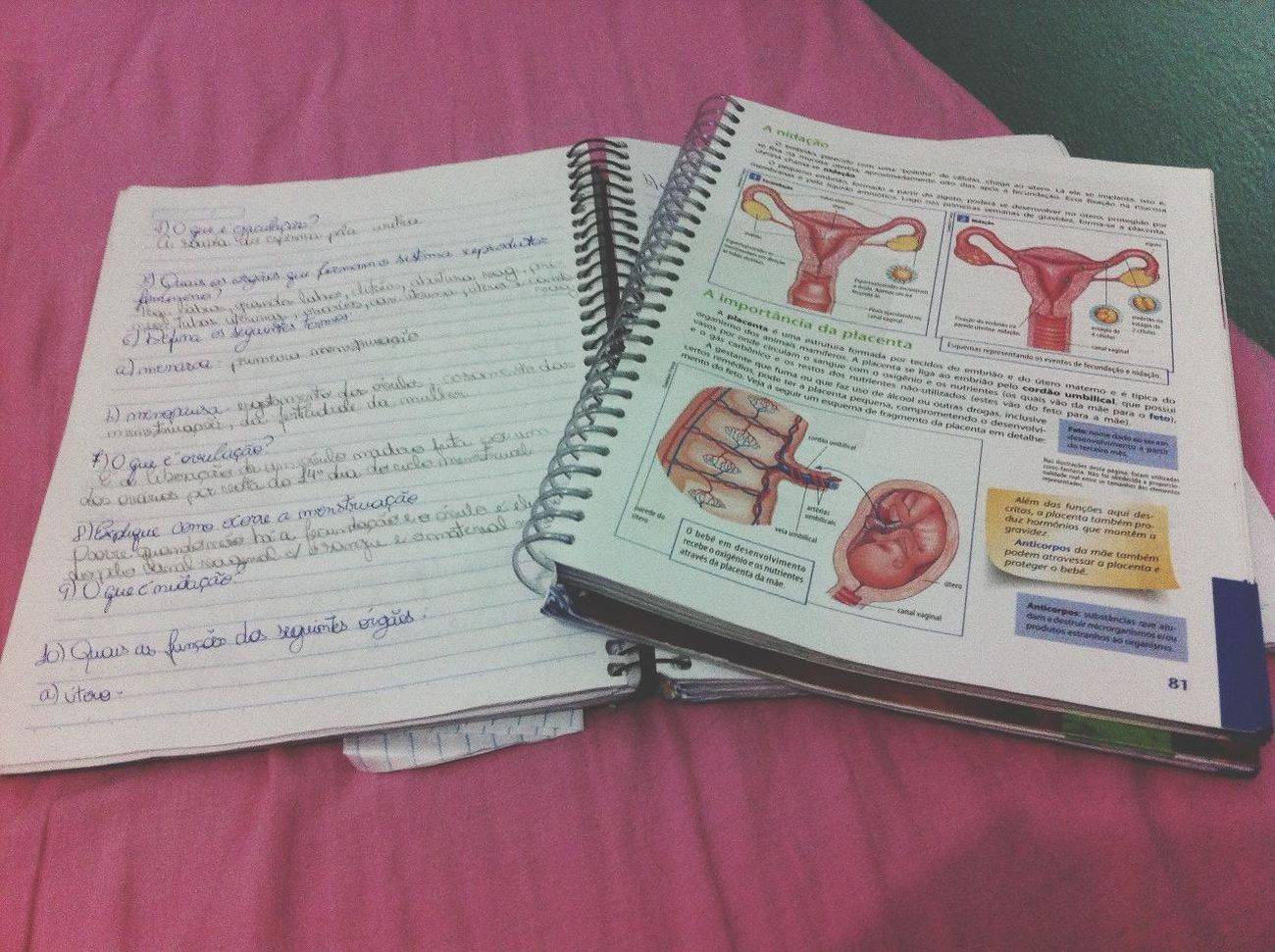 Studying Biology