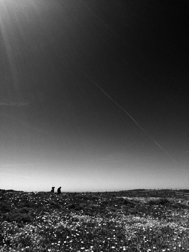 Black & White Portugal