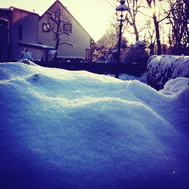 Walking Around Winter?