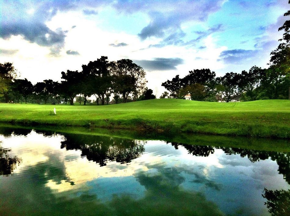 My Favorite Photo Reflections Mirror Reflection Mirror Image Golfing After Raining After The Rain Backyard