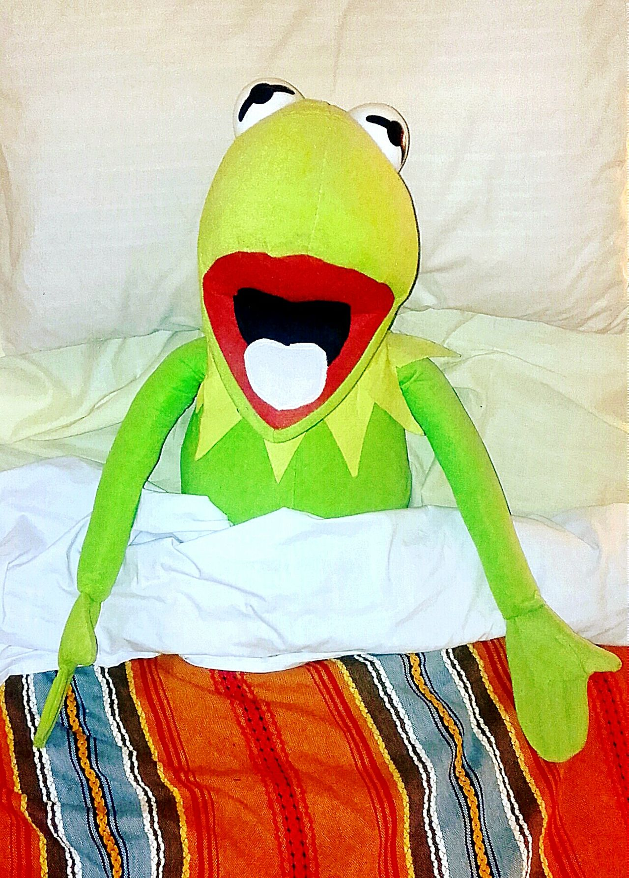 Kermit Animal Representation Kermie Let Me Sleep In Bed Just Chillin' Hang Over  Going To Bed Hung Over Good Morning Waking Up Bedtime InBed Feeling Green Who's Been Sleeping In My Bed? Miss Piggy Loves Kermie Kermit Kermit Rules!👊 Kermitthefrog Kermit The Frog I'm Feeling A Bit Green Check This Out Laying In Bed Lying In Bed I Want Breakfast In Bed Who Woke Me? Bed Time Funnypictures Funny Pics Funny Pictures No People