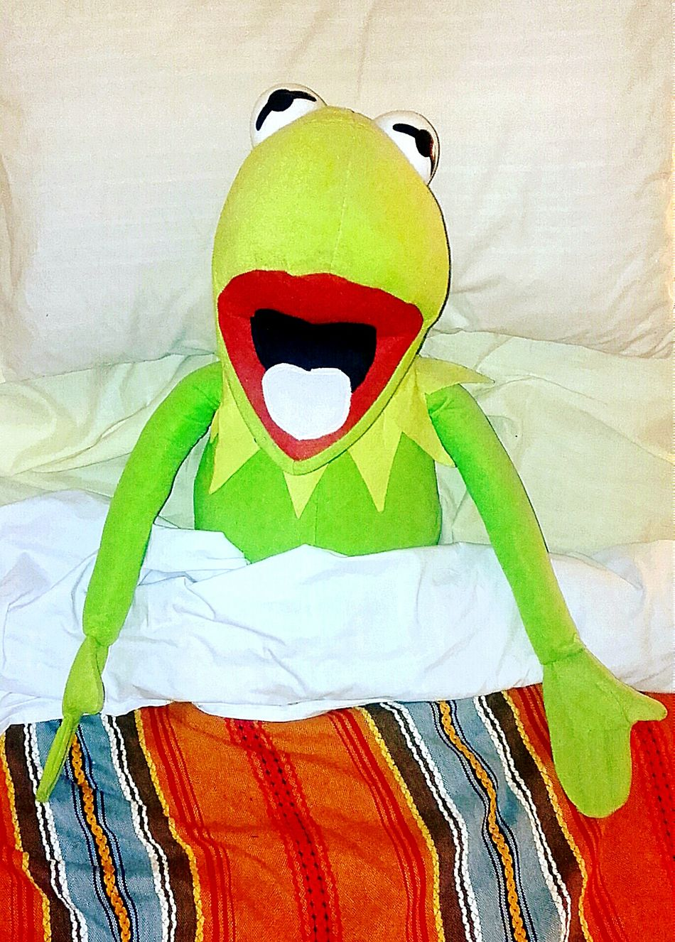 Who's Been Sleeping In My Bed? Miss Piggy Loves Kermie Kermit Kermit Rules!👊 Kermitthefrog Kermit The Frog Kermie I'm Feeling A Bit Green Check This Out Laying In Bed In Bed Lying In Bed I Want Breakfast In Bed Who Woke Me? Bed Time Funnypictures Funny Pics Funny Pictures Don't Worry, Be Happy Don't Worry Be Happy