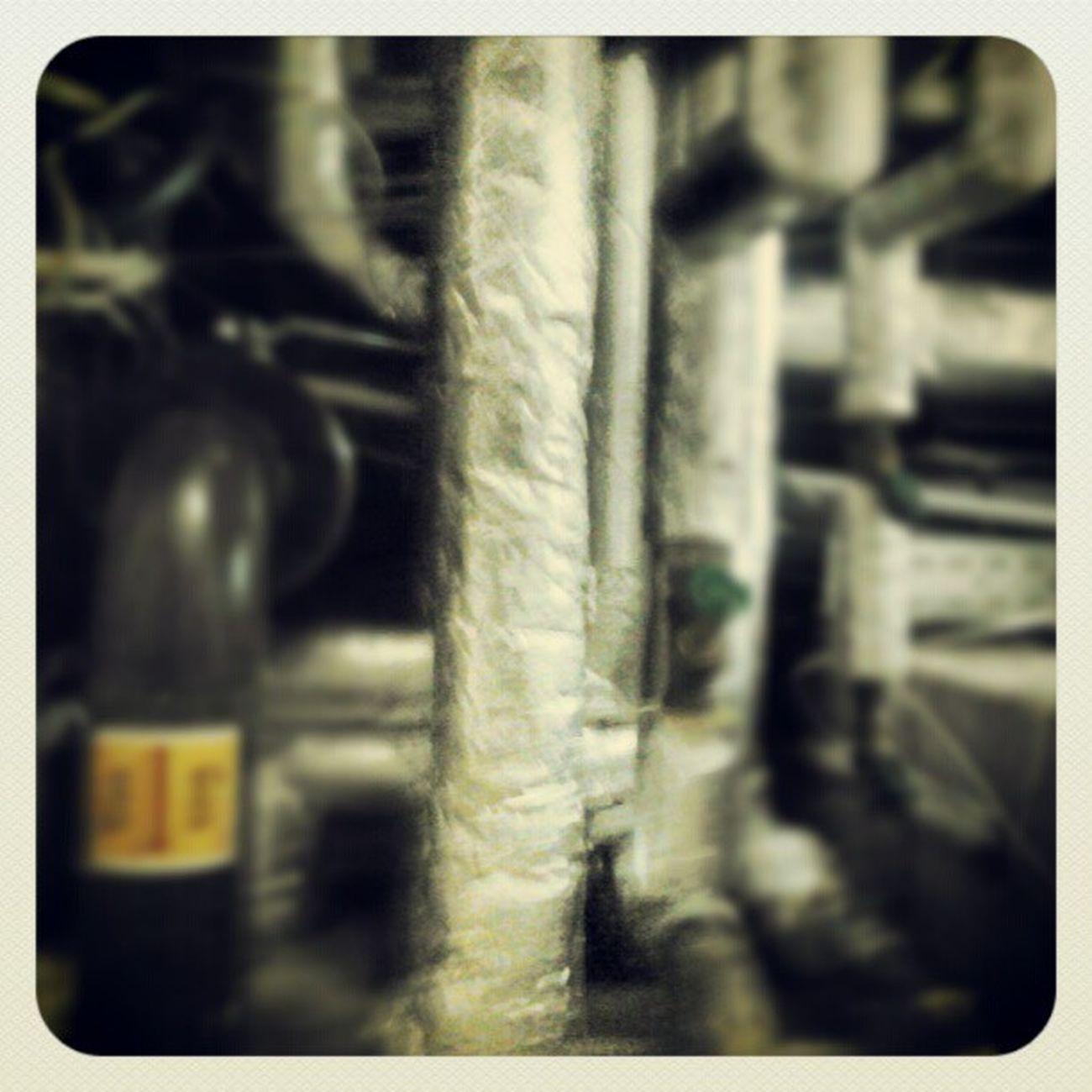 Atwork Katakomben Basement Hot blondiedebbieharrymusicpunkrocknrolllovepeacelikefirlikedailypicpicofthedayinstaphotoinstalikeinstalovehope