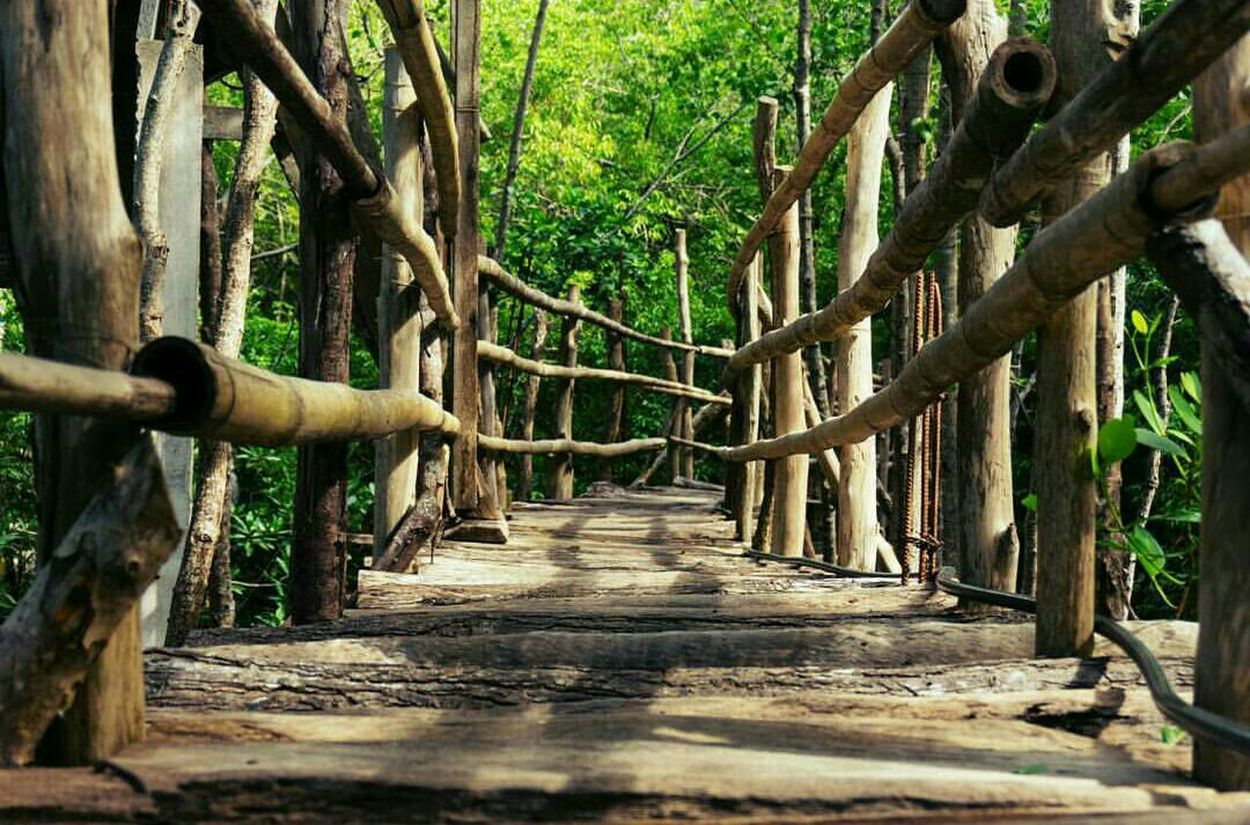 Showcase: December Walkway Love♥ Isladefuego Protecting Where We Play Travel Photography Savetheplanet Time Travel Travel Woodbridge Landscapes With WhiteWall On The Way The Great Outdoors - 2017 EyeEm Awards The Great Outdoors - 2017 EyeEm Awards
