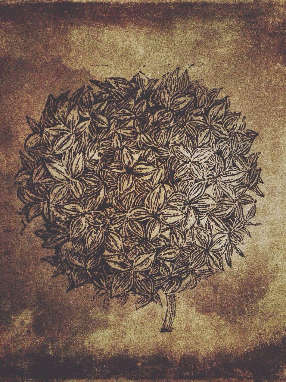 Jayez's Wood Cut Painting The Tale Of Plants Art
