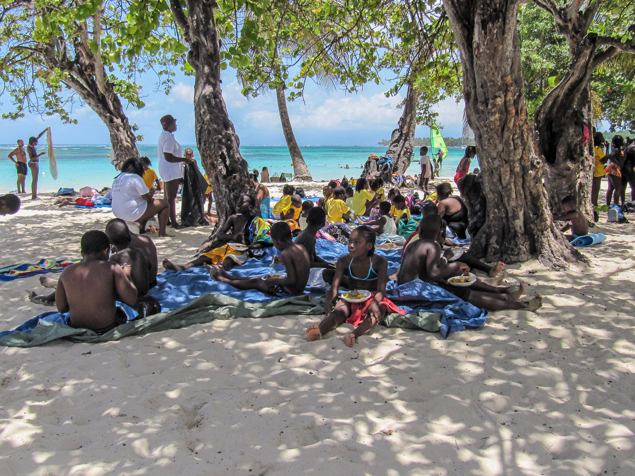 beach, sand, large group of people, tree, vacations, sea, real people, relaxation, leisure activity, lying down, men, day, outdoors, sitting, nature, water, women, sky, people, adult, adults only