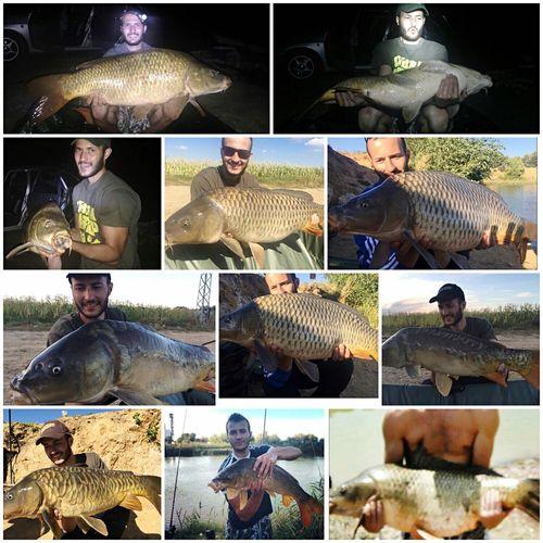 Pesca pescadores Déesse Carpfishing Carpa Sierra Brava PEZ Carpfish