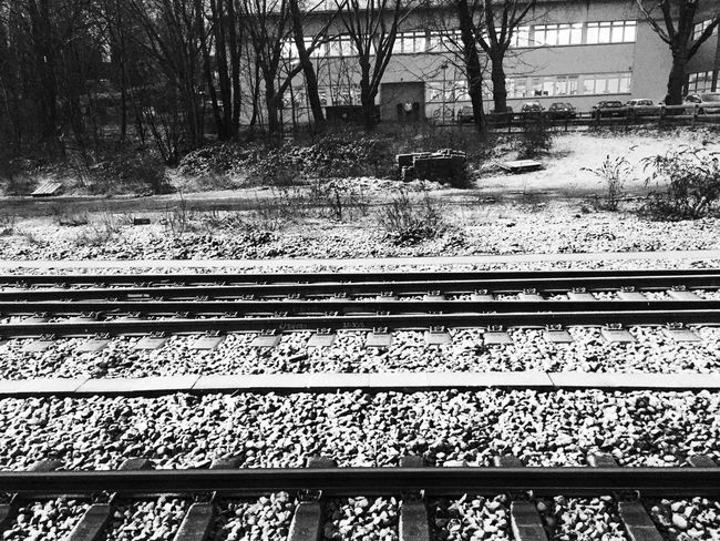 Hell Ain't A Bad Place To Be Landscape_Collection Eye4photography  VSCO Blackandwhite Monochrome Ruhrgebiet Bw_collection Vscocam Ruhrpott