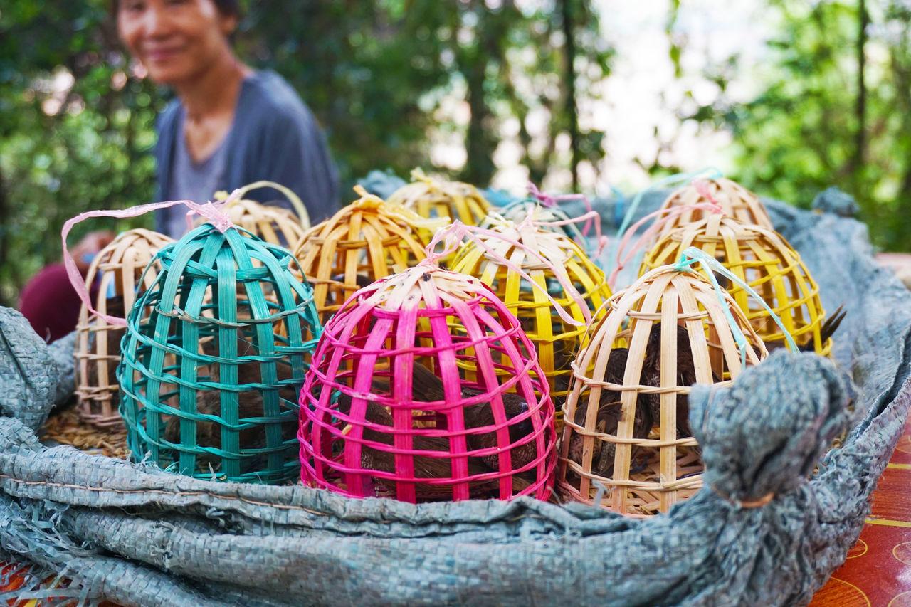 2017 Adult Basket Bird Close-up Colorful Day Fortune Laos Luang Phabang Luang Prabang Nature One Person Outdoors People Shop ラオス ルアンパバーン 鳥