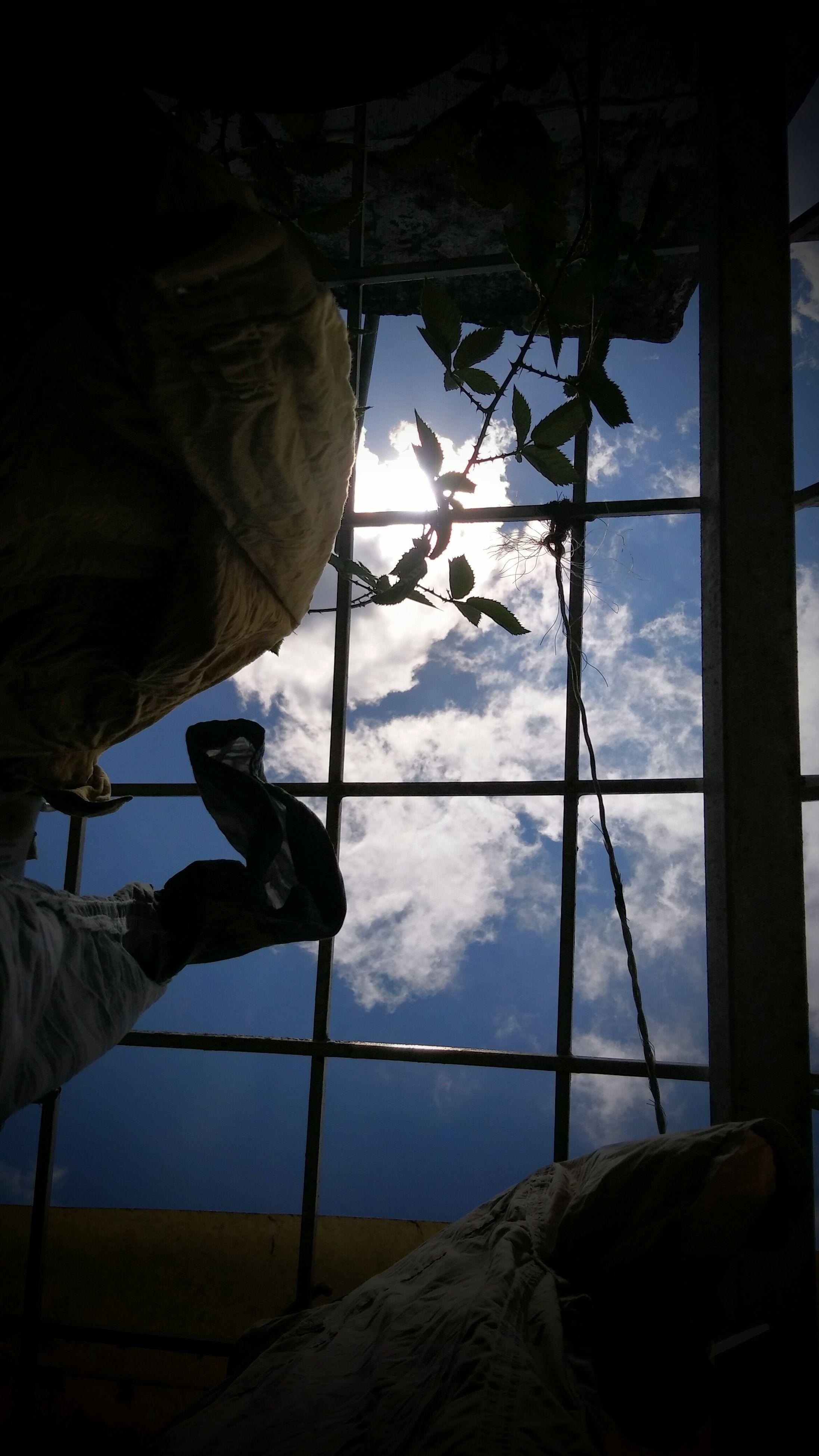 indoors, sky, window, ceiling, cloud - sky, day, nature, scenics