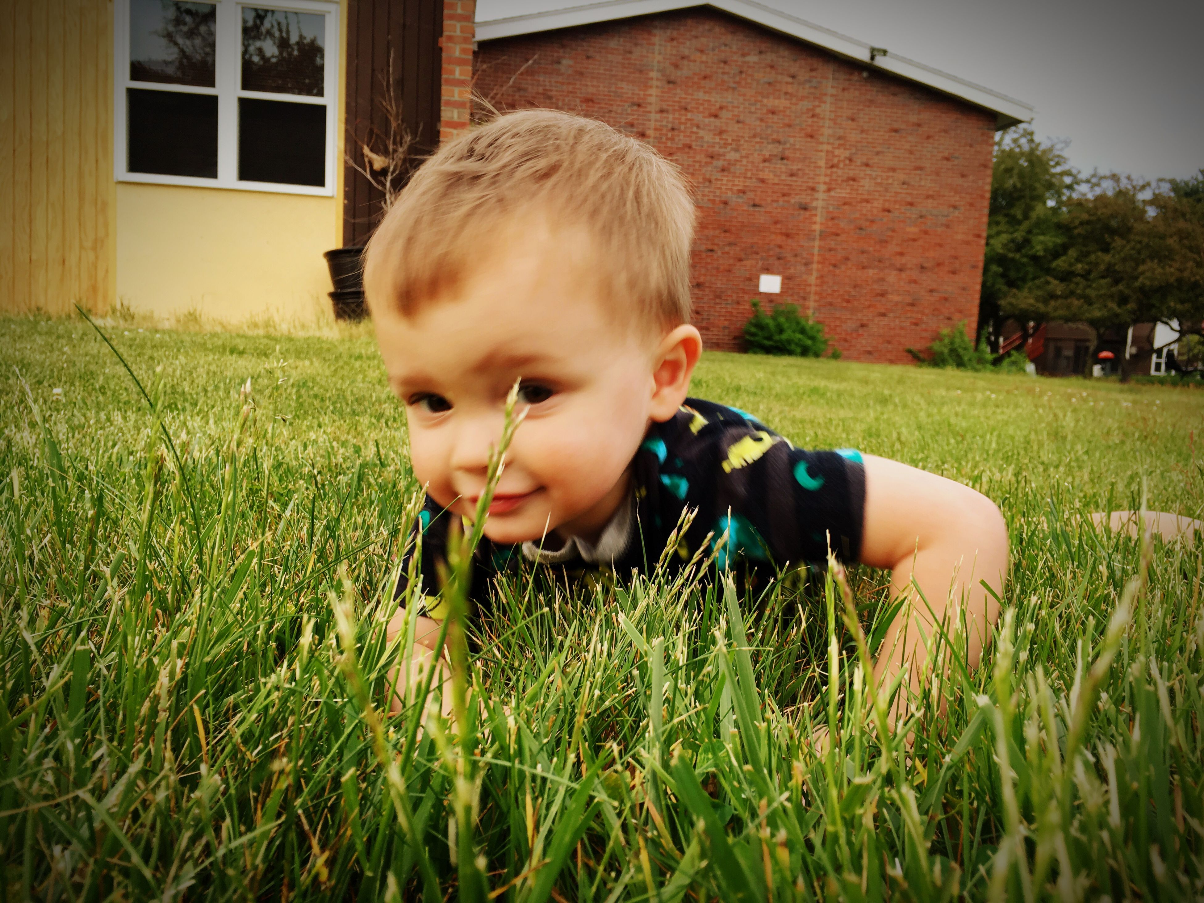 grass, childhood, elementary age, grassy, boys, innocence, field, person, cute, lawn, lifestyles, leisure activity, girls, casual clothing, green color, front or back yard, built structure, architecture