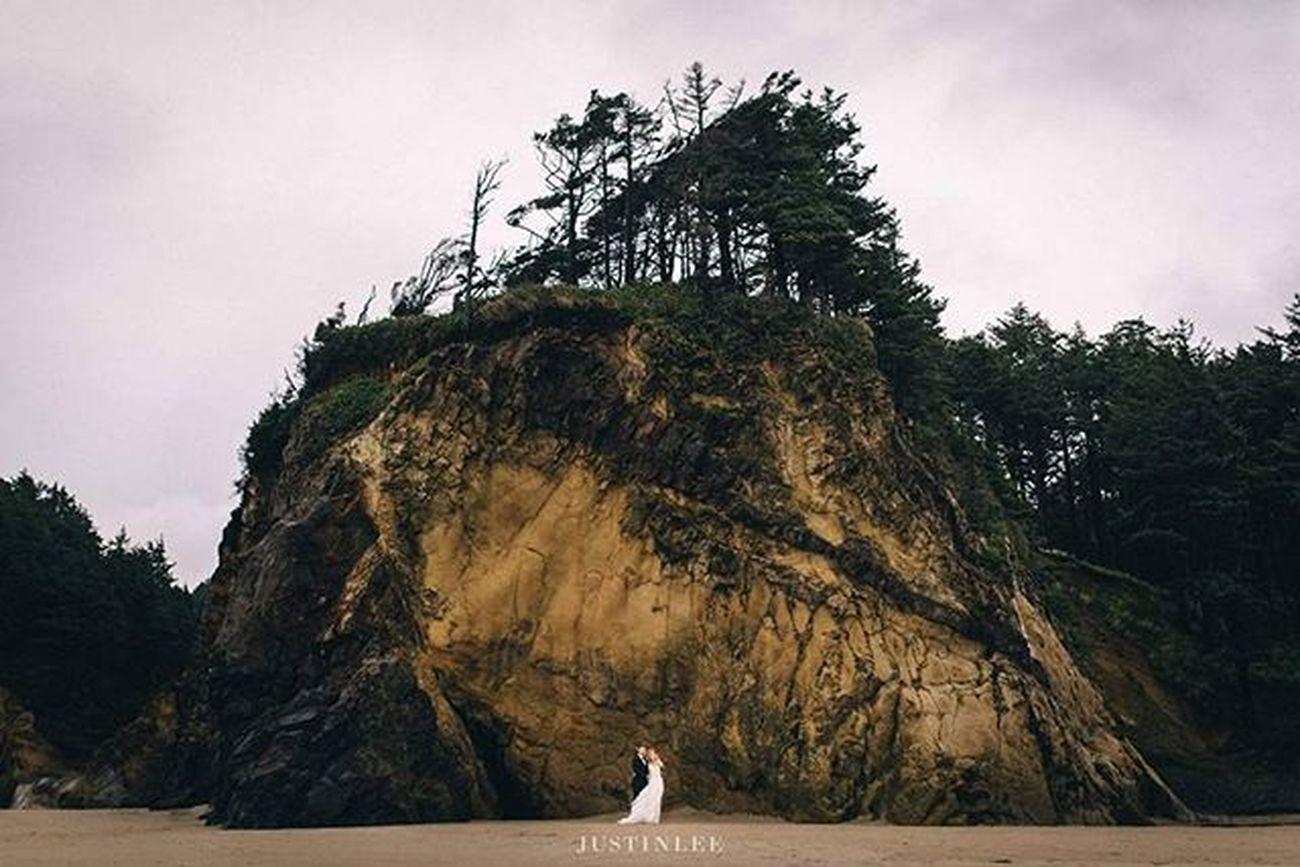 Portlandphotographer Portlandweddingphotographer Portlandwedding Pdxweddings Oregonwedding Oregonweddingphotographer Portlandbride Portlandengagement Nwweddings Nwbrides PNW PNWonderland Thevisualscollective Lookslikefilm