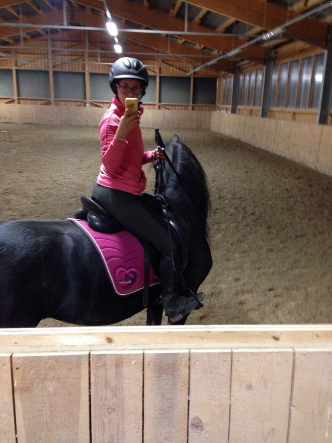 IPhoneography Horse Horses Lilli💝 One Animal Indoors  One Person Domestic Animals Headwear Helmet Architecture Weapon People Person Mammal Adult Day One Man Only I Love Horses I Love My Horse Friesen Black Horse