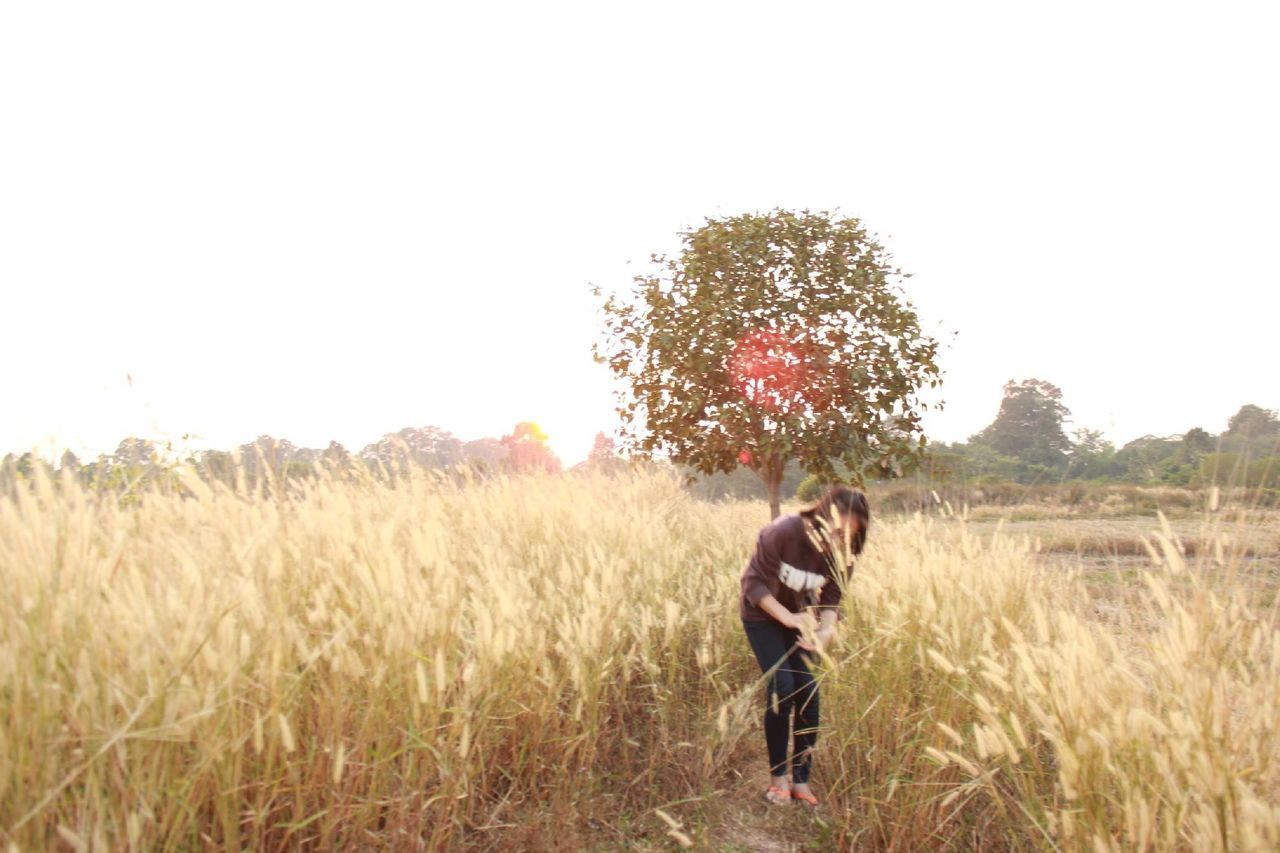 during the sunset behind the tree 🌄 Tree Field One Person Only Women Sky Grass Nature EyeEmNewHere Long Goodbye