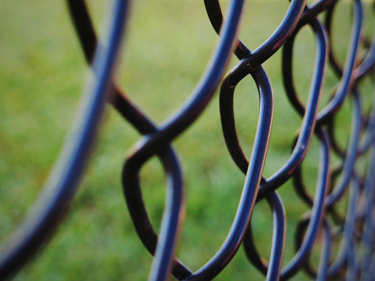Chainlink Fence Metal Selective Focus No People Pattern Backgrounds Background Patterns Focus Foreground Green Background Grassy Background Black Fence Shallow Depth Of Field Canon Taking Photos Daily Photo Everyday Life Love Happy Peace Good Morning