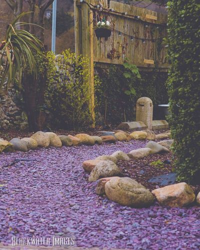 Zen Northern Ireland Mchughes Beer Garden Fence Slate Greenery Old Baths