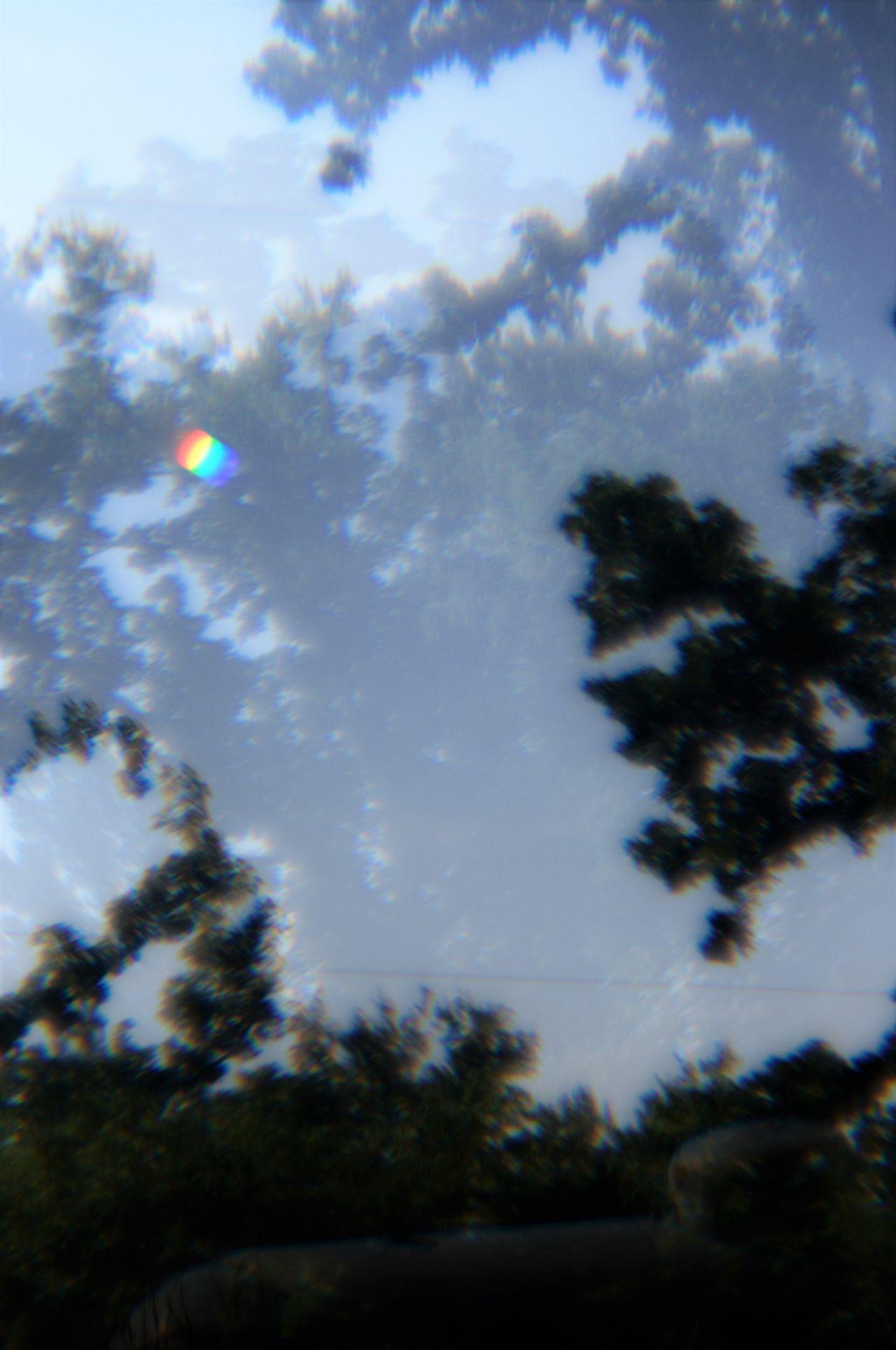 Backgrounds Day Defocused Fog Effect Landscape Lens Flare Multi Image Lens Outdoors Prism Effect Sky Sunbeam Tranquil Scene Tree