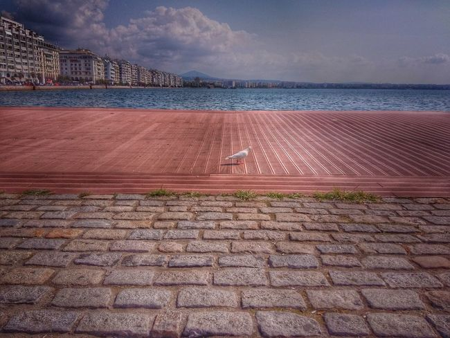 Pax Salonica Thessaloniki HDR Hdr Edit Sky Clouds And Sky Filtered Image Thessaloniki Greece Sea Seascape Promenade Water Snapseed Beach Getting Some Rest