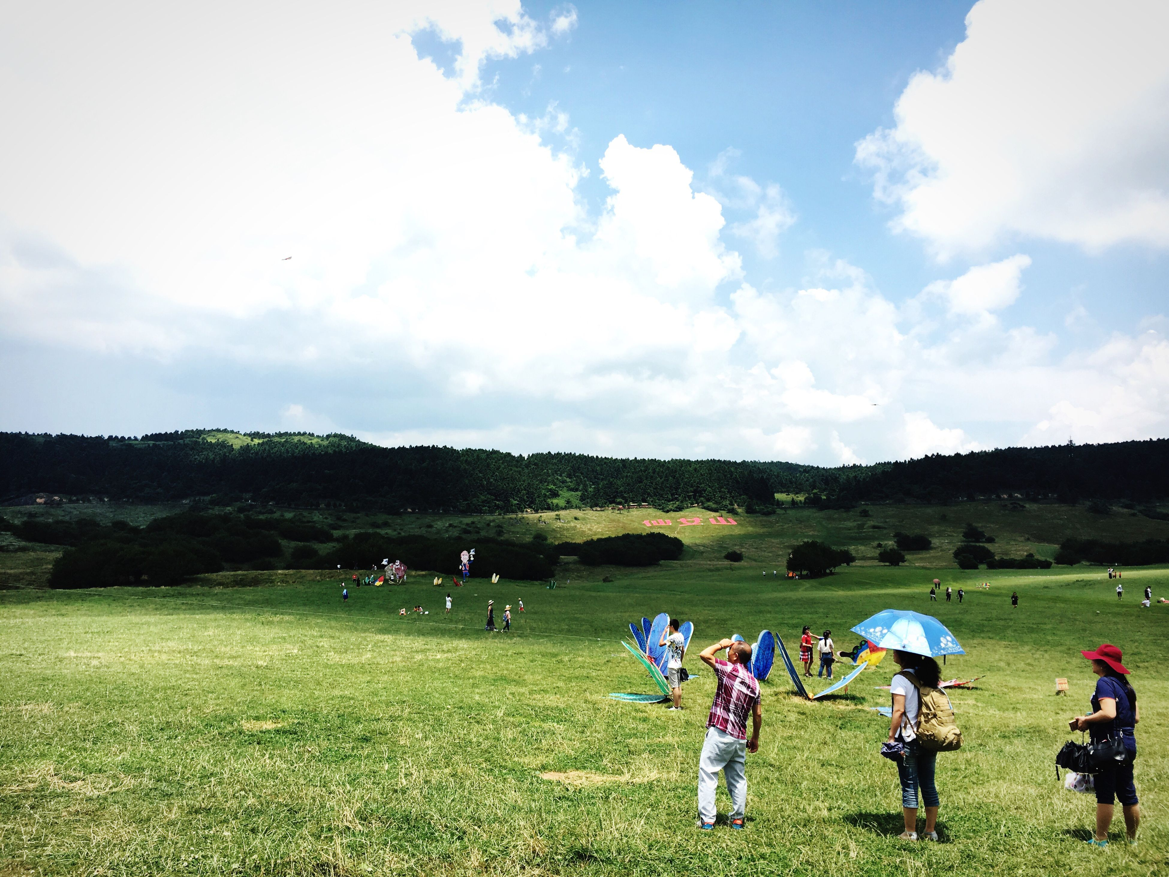 grass, medium group of people, real people, field, sky, playing, green color, nature, leisure activity, men, togetherness, lifestyles, outdoors, day, women, standing, childhood, boys, enjoyment, landscape, girls, tree, teamwork, beauty in nature, people, adult
