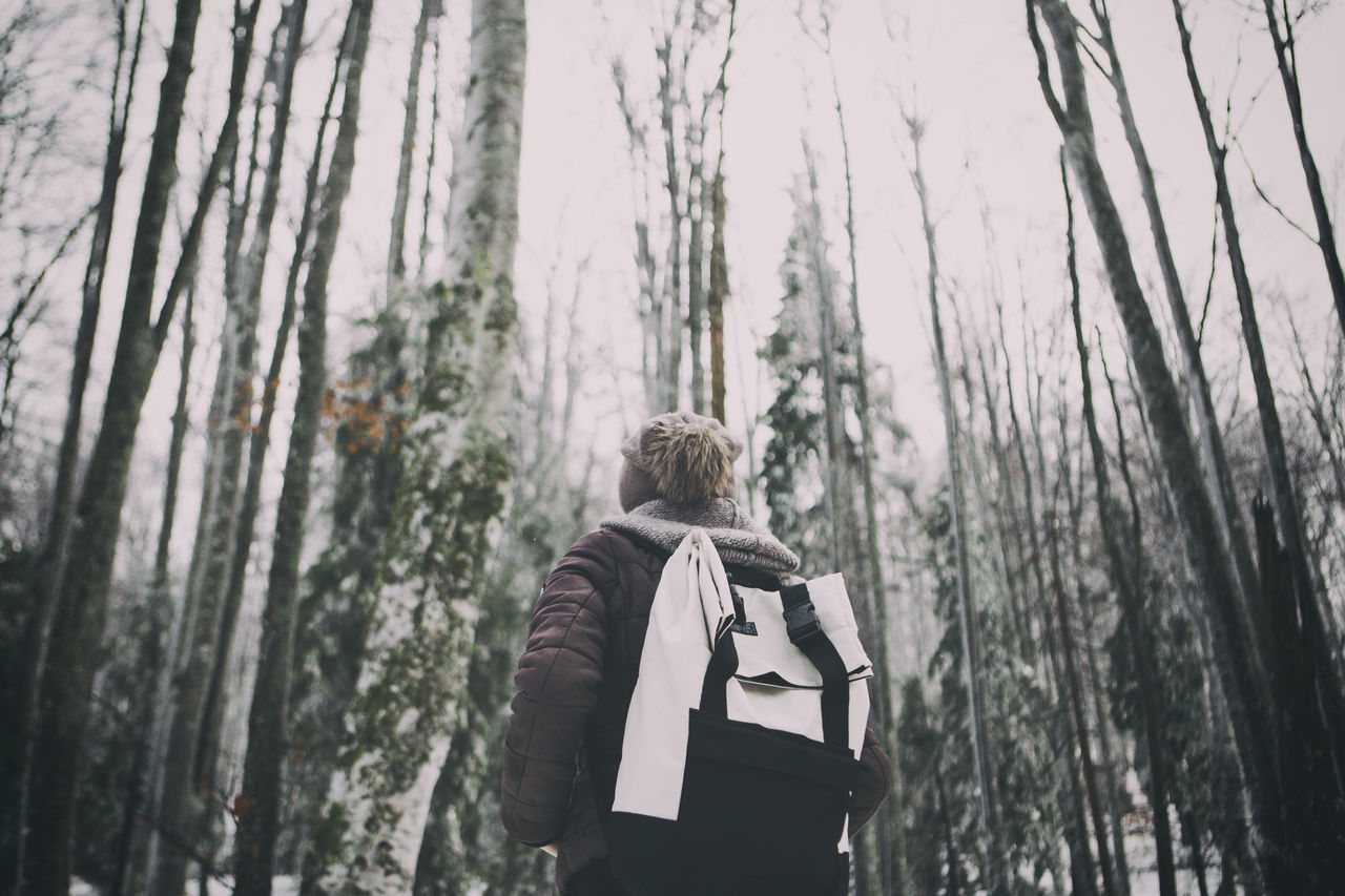 Bag Blond Hair Eyem Best Shots Eyem Nature Lovers  Film Forest Forest Photography Green Color Hiking Lifestyles Nature Nature_collection One Person One Woman Only Only Women Outdoors Outdoors Photograpghy  People Rear View Still Life Travel Tree Tree Trunk Warm Clothing Winter