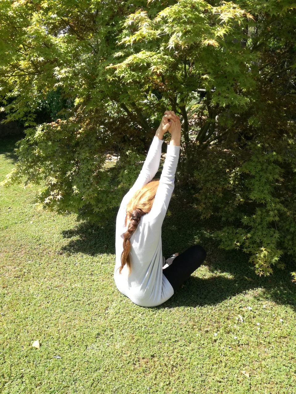 full length, yoga, exercising, grass, day, green color, one person, barefoot, healthy lifestyle, tree, young adult, balance, leisure activity, sunlight, outdoors, women, nature, young women, flexibility, real people, one woman only, adults only, adult, people
