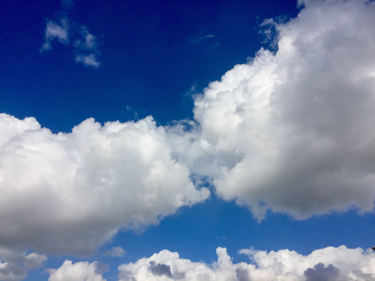 Clouds No People Indoors  Backgrounds Sky Cloud - Sky Cloudscape Blue Nature Fluffy Tranquility Cumulus Cloud Low Angle View Scenics Beauty In Nature Softness Day Cumulus Sky Only Heaven Outdoors