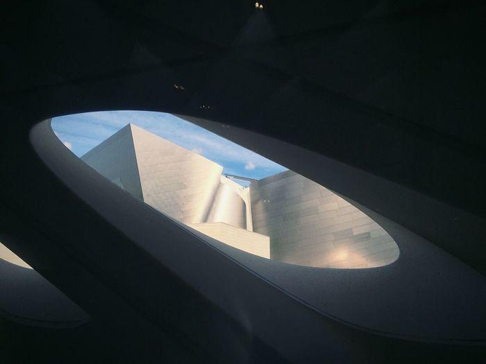 Frank Gehry The Broad Walt Disney Concert Hall Diller Scofidio + Renfro