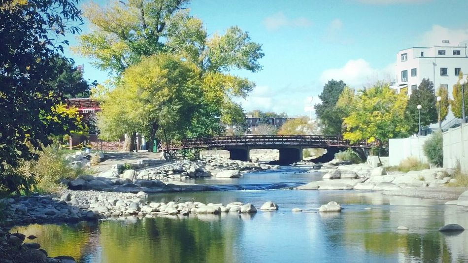 Wingfield Park downtown Reno, NV Truckee River Reno, NV Cityscape Bridges NEVADA, USA!♡ Downtown EyeEm Nature Lover Street Photography Showcase: December Landscape Landscapes With WhiteWall