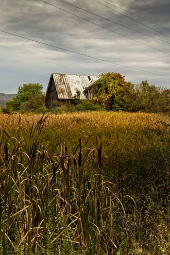 Rural decay: abandoned barn/farm in northern Pennsylvania. Pennsylvania Rural Scene Field Landscape Nature Beauty In Nature Sky Canon7d  EyeEm_abandonment Demolitionbyneglect Abandoned Places Abandoned Autumn Colors Autumn Collection Nature Photography Barnstalking Barnaholics