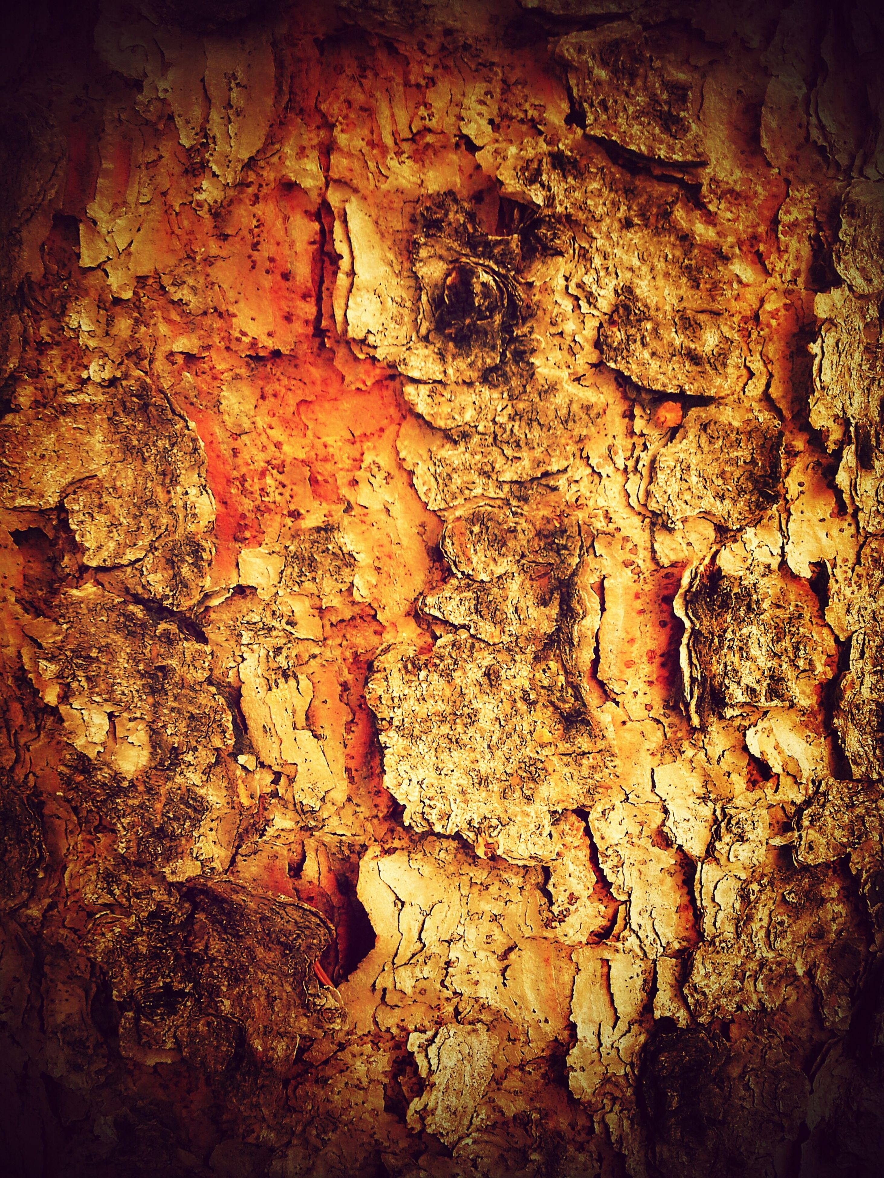 textured, damaged, weathered, rough, indoors, close-up, deterioration, abandoned, old, run-down, full frame, wall - building feature, backgrounds, obsolete, rock - object, no people, wall, destruction, bad condition