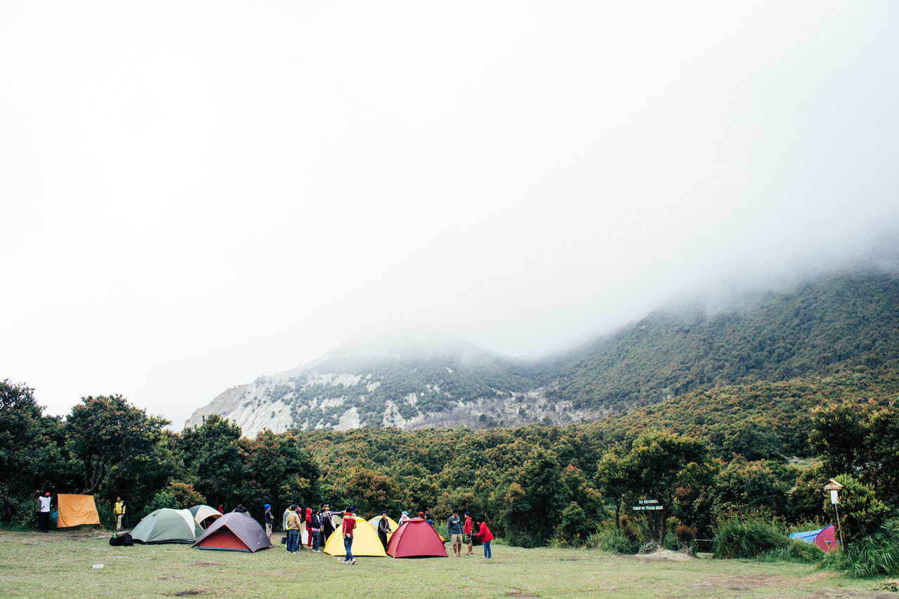 Beautiful stock photos of camping, Camping, Copy Space, Day, Fog